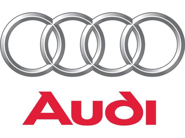 Audi Läder & Vinylfärg