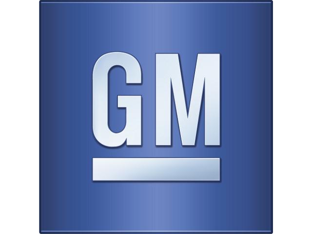 GM Läder & Vinylfärg